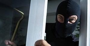 Vakfıkebir Hasan düzü obasında hırsızlık